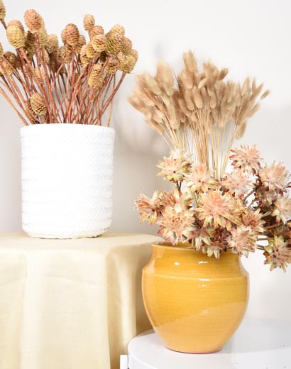 20-10-intro-trockenblumen-gelb